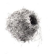 01-nest6