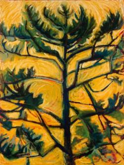 nw.tree3